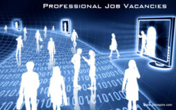 Professional Job Vacancies